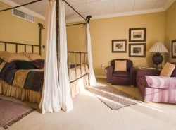 African Orchid Room at the Old Town Guest House