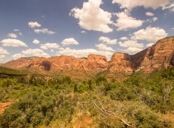 Timber Creek Overlook at Kolob Canyons, Utah