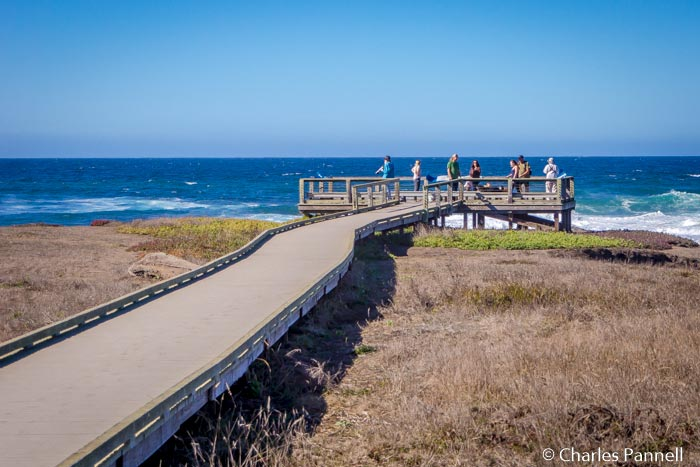 Boardwalk and viewing platform at Laguna Point in MacKerricher State Park