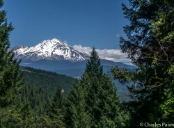 Mount Shasta viewed from Vista Point