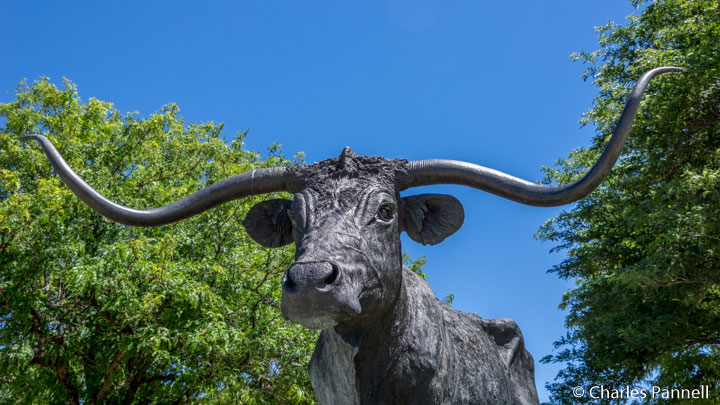 El Capitan statue commemorates the Texas Longhorn that gave Dodge City its place in history at the Queen of the Cow Towns