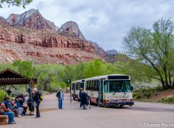 Shuttle bus in Zion National Park, Utah
