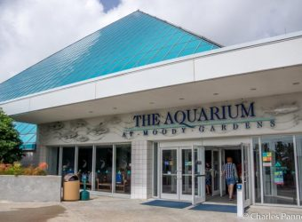 Entrance to the Aquarium Pyramid at Moody Gardens in Galveston, Texas