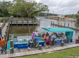 Wild Native Tours boarding dock