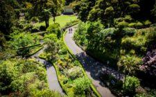 Wellington-Attractions-4