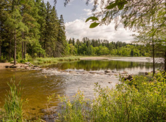 Stay and Play in Itasca State Park
